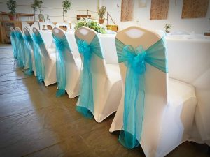 Organza sashes Teal